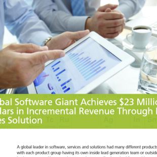 Case study – global software firm